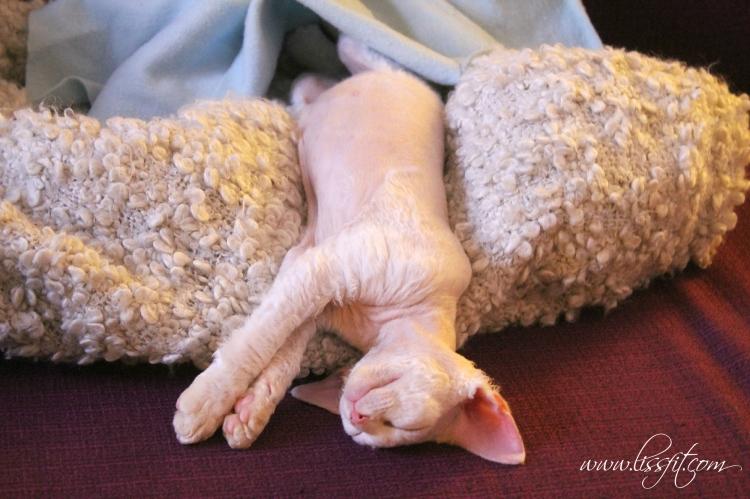 Loke drx sleeping beauty lm