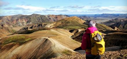 Island Laugavegur trek berg natur landskap trekking