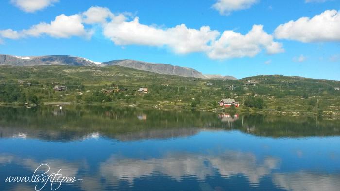Hardangervidda fjell vann lissfit