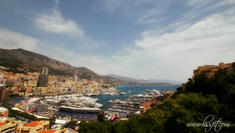 Monte Carlo view