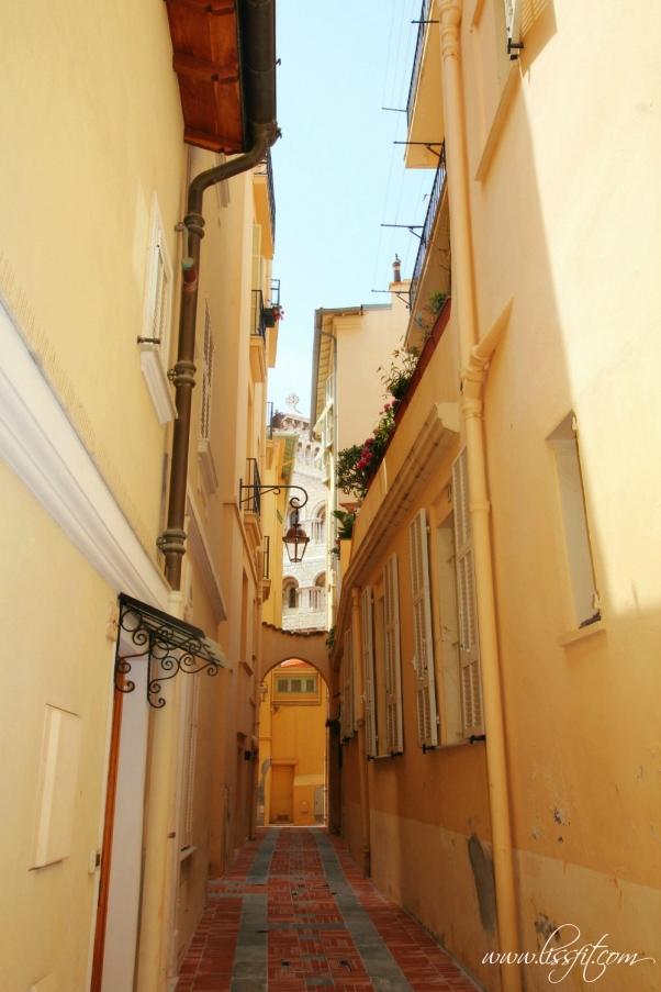 Monaco Le Rocher alle lissfit