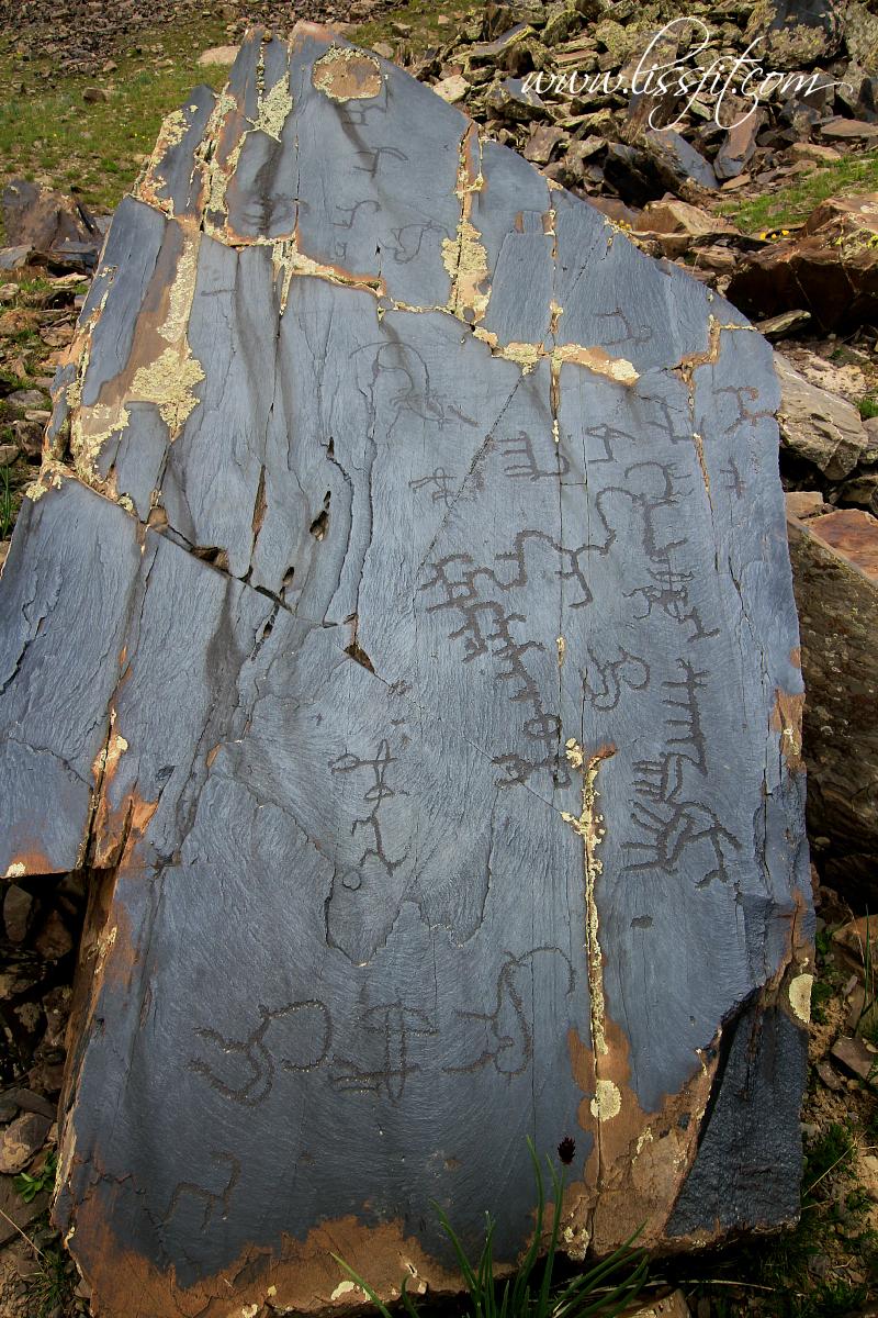 petroglyfer ibex kyrgyzstan hällristningar
