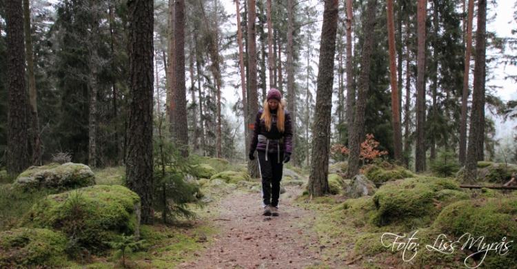Foto liss myrås bruksleden skogsstig västerås