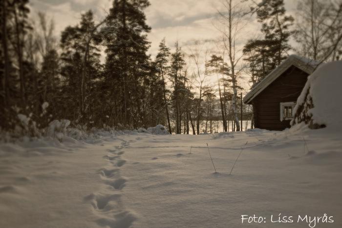 björnön stuga foto liss myrås sweden