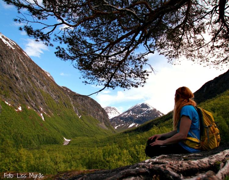 Tafjordfjella muldalen nausen foto liss myrås