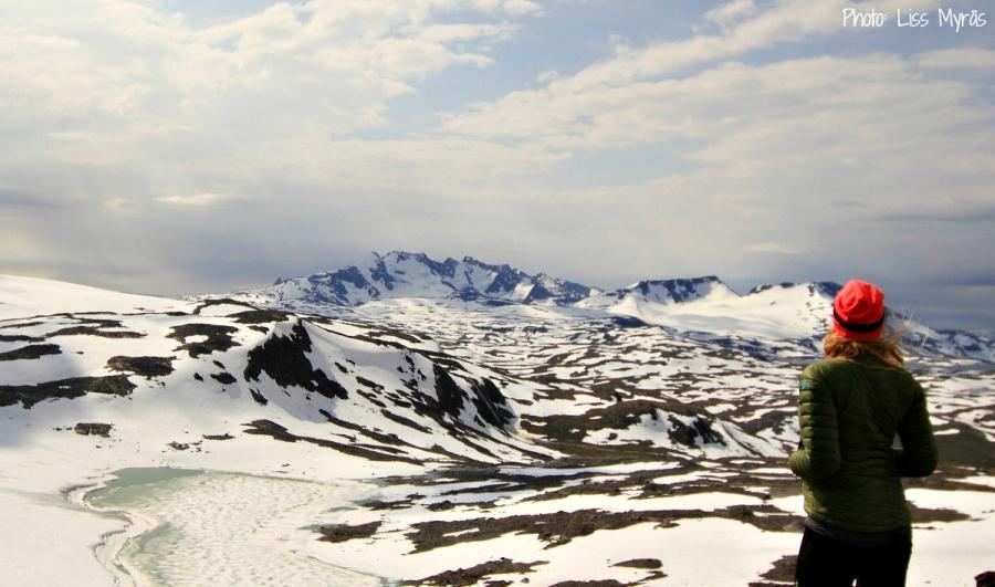 Smorstabbreen Krossbu Sognefjellet Jotunheimen Norway landscape photo liss myras