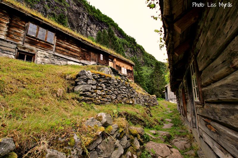 skageflaa fjord farm setra geiranger photo liss myraas