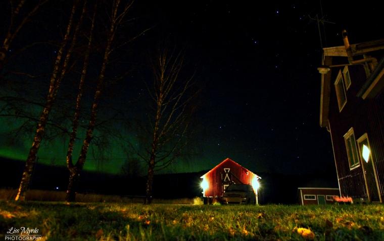 Aurora Borealis northern lights nordlys polarsken norrsken ornskoldsvik