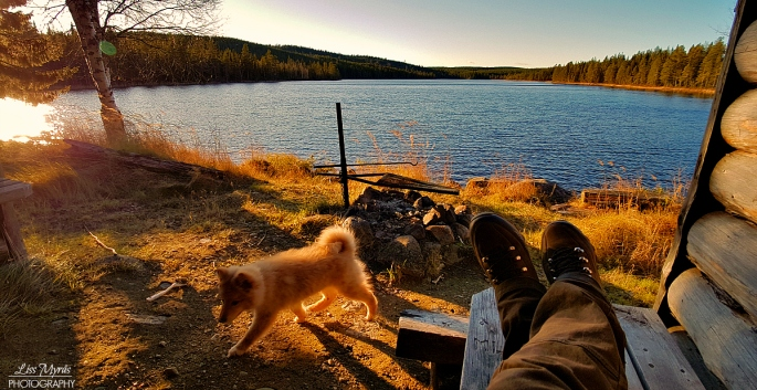 gapahuk vindskydd grill lapphund fiske fishing view nature lanscape