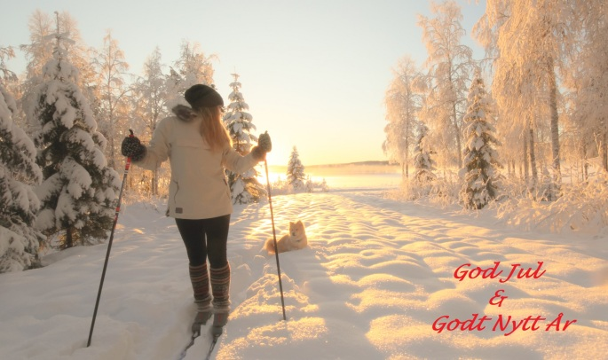 christmas card god jul merry winter landscape nordic snow frost dog skiing