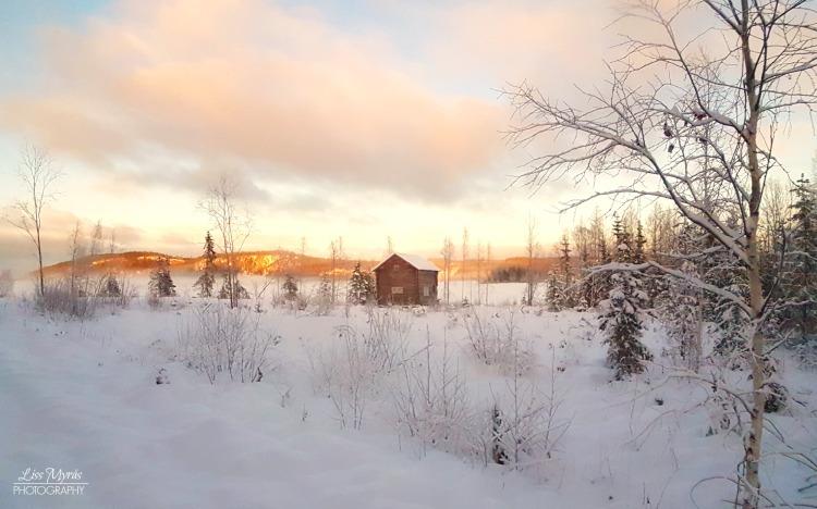 winter cabin frost lake skiing skitur längdskidor bredbyn örnsköldsvik nature