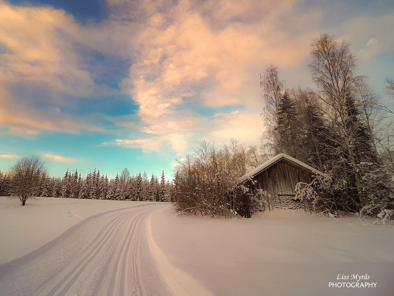 fäbod skidspår cross country skiing sweden landscape bredbyn örnsköldsvik sport cardio