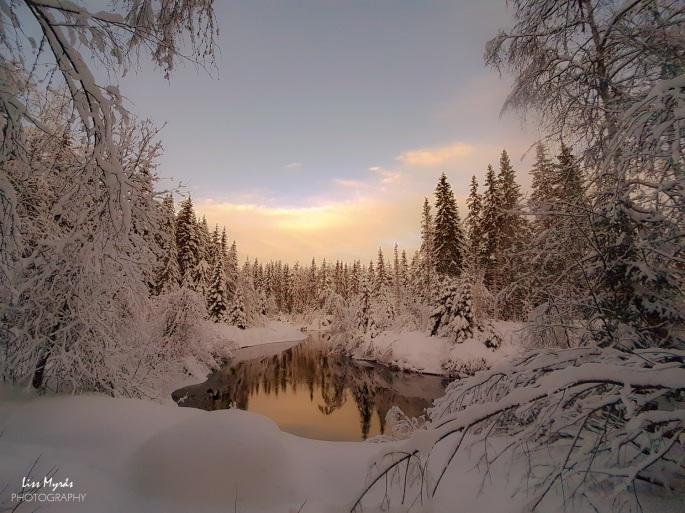 vinter landskap örnsköldsvik skitur cross country skiing