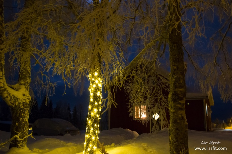 winter night wonderland scandinavia path snow shoveling lights farm house norrland