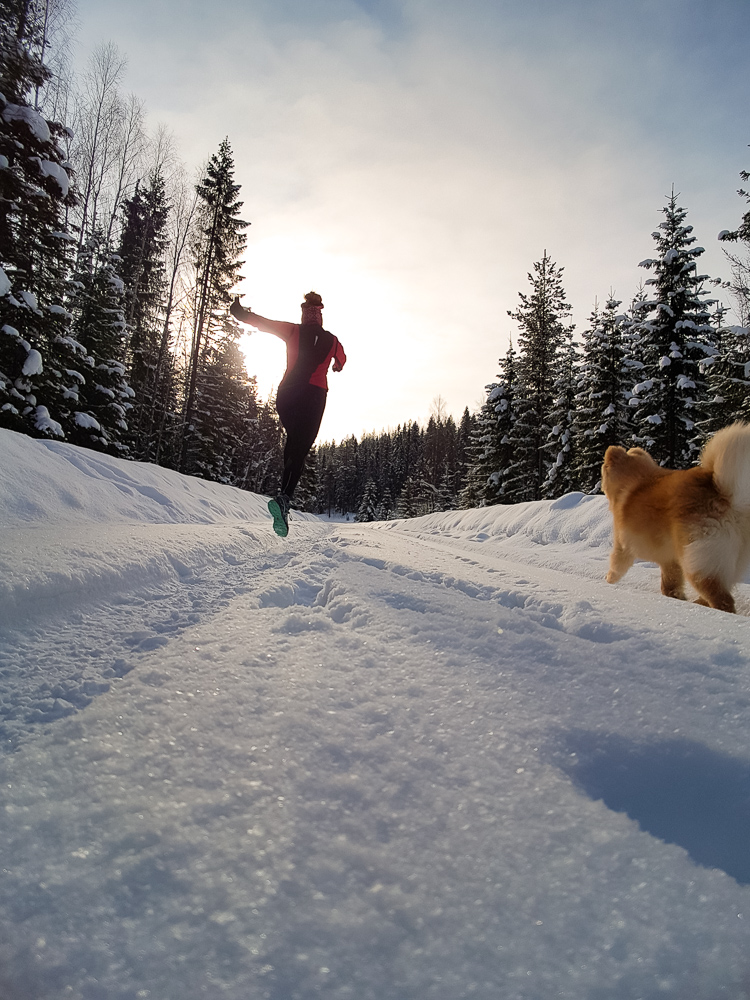 Winter running snow run jogg lapphund trail
