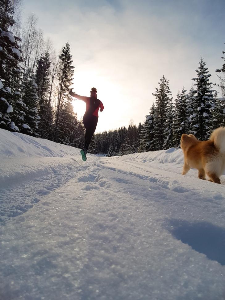 Winter running snow run jogg lapphund trail