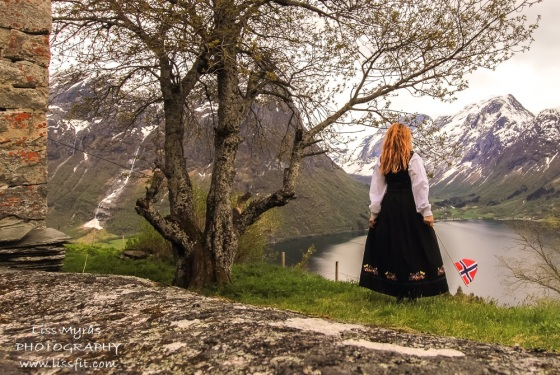 segestad bunad dress norwegian national day 17