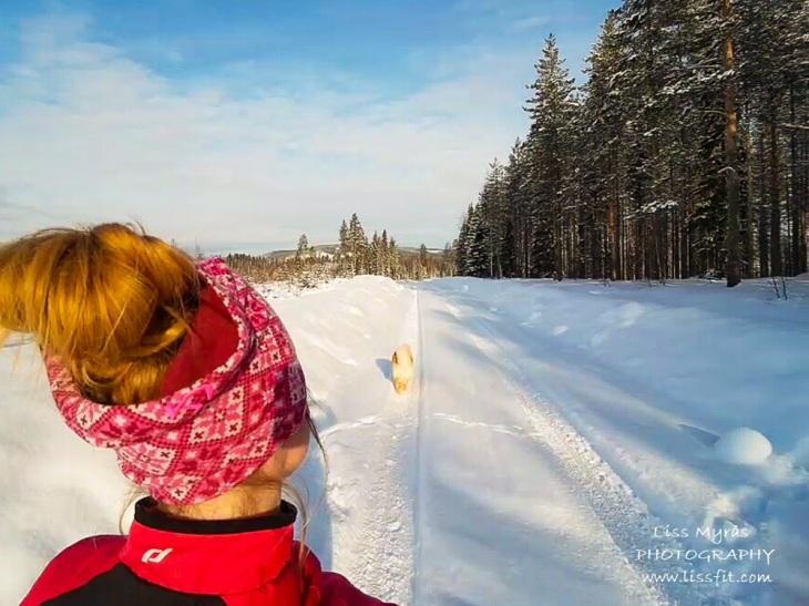 winter run fluffy snow lapphund trail road winderwonderland runner cardio workout