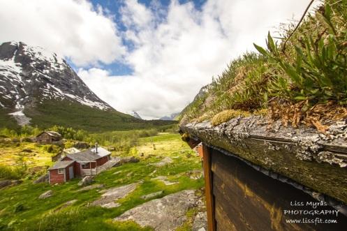 Sunndalsseter view