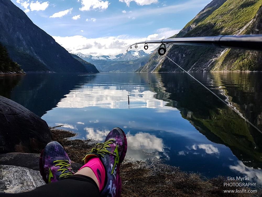 tafjord fishing mackarel