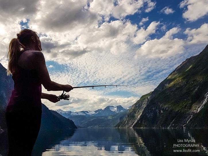fiske tafjord fishing mackerel makrell free fishing fisketur