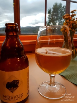 """After a sweaty bicycle climb from Dombås to Dovre this local produced chilled """"Musk"""" Moskus beer taste absolutely delicious!"""