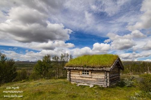 Dovrefjell Dovre Furuhauglie Mountain pasture seter landscape nature hike