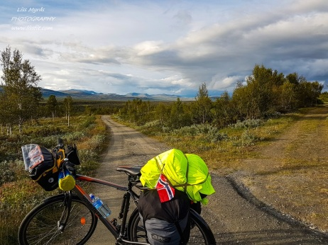 Dovre Dovrefjell mountain world bicycle route trail sykkelrute road landscape Norway