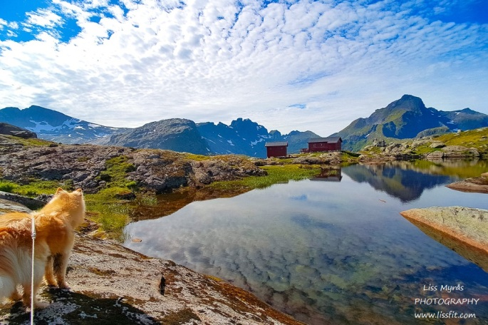 Munkebu dnt cabin lake hike moskenes lofoten