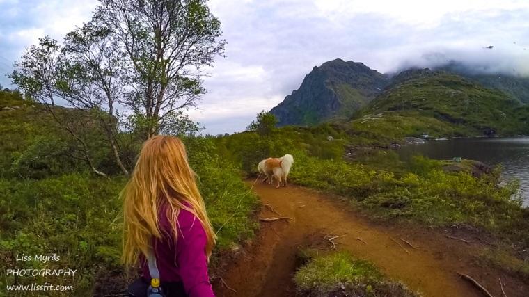 Munkebu hiking trail Lofoten Moskenes Studalsvatnet lapphund