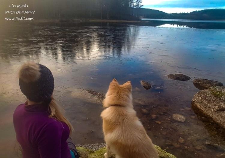 rôdvattensjön lake hike sweden