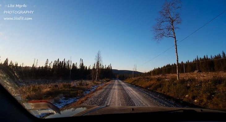 Stockholmsgata nature reserve road tripjpg