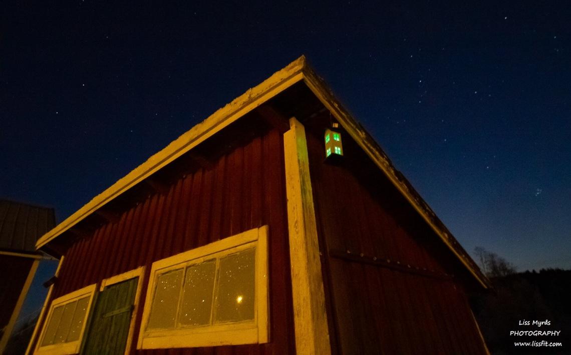 bird house solar light solcell ljus fågelmatare nigth nattlysnordic arctic polar frost