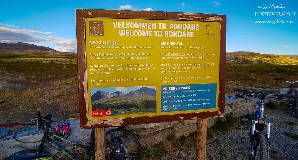 bicycle rent Spranget Rondane