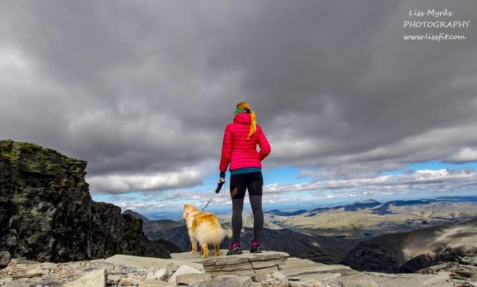 storronden topptur varde cairn 2000m peak panoramic rondane nasjonalpark norway