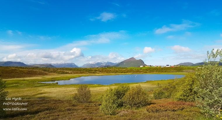 swan lake landscape views svanesjøen Lofoten