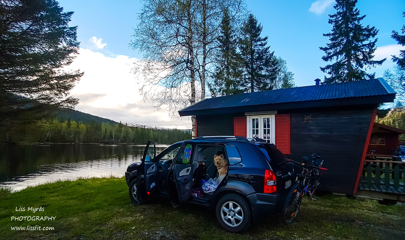 Namsskogan cabin Namsen river roadtrip lapphund travel Norway