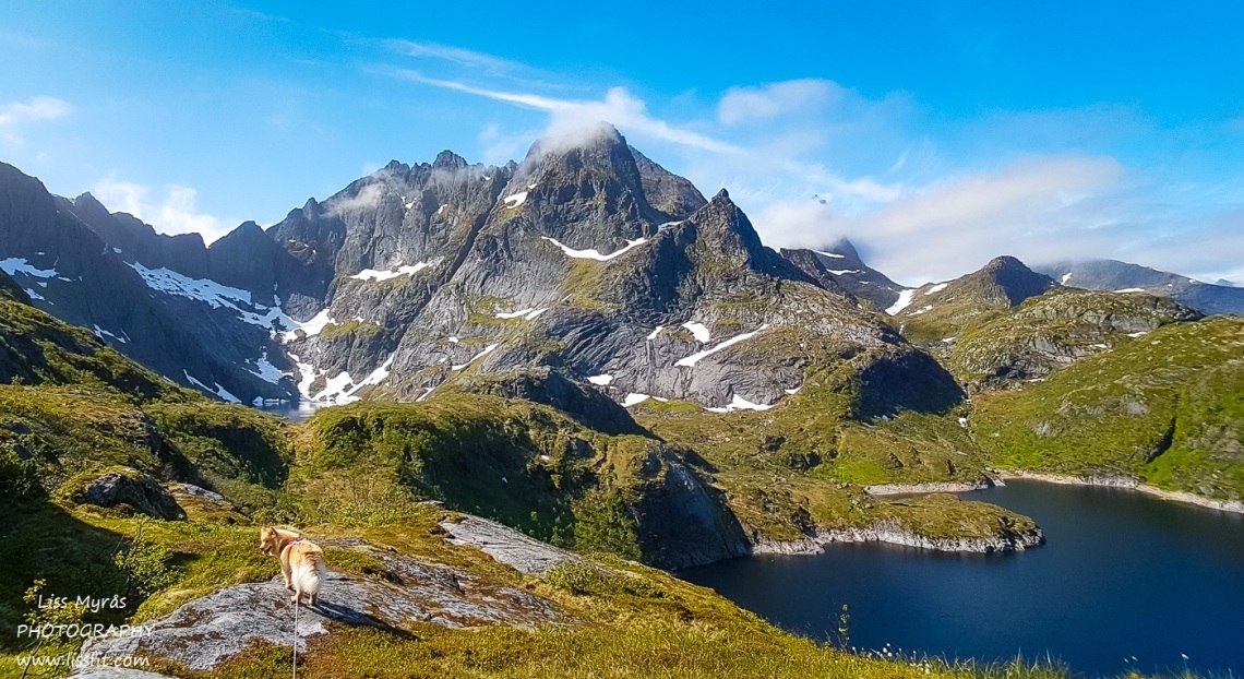 Svartvatnet lake hike Lofoten landscape easy hiking lapphund