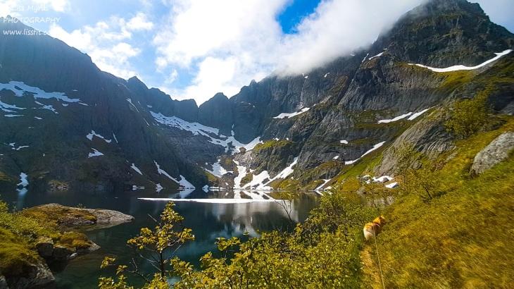 Svartvatnet lake Lofoten solbjornvatnet landscape easy trail hiking lapphund