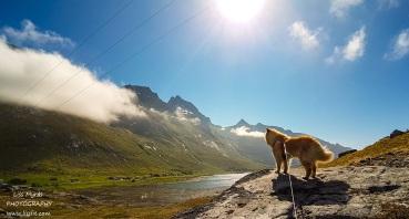 Skjelfjorden on our way up