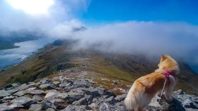 Panoramic descent