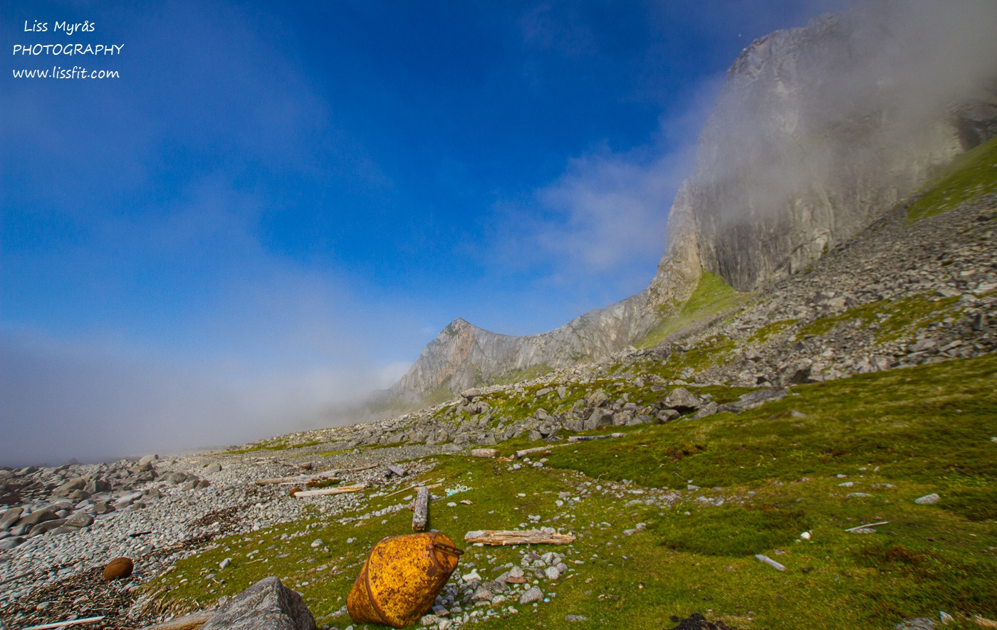 Hornneset beach fnsk lapphund Vikten sandstrand Lofoten strandhugg