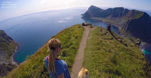 haaheia-hiking-lofoten-vaeroya-natoveien-dog-landscape-turquoise-beach