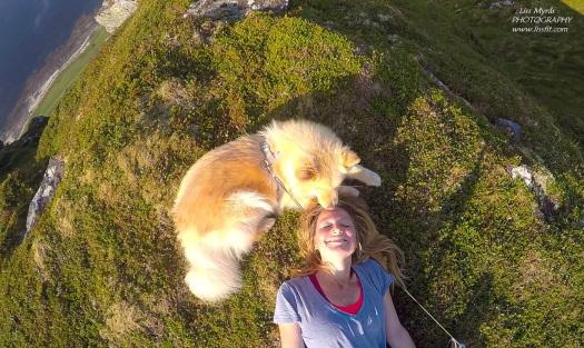 moments hiking dog playful fun love turkenter