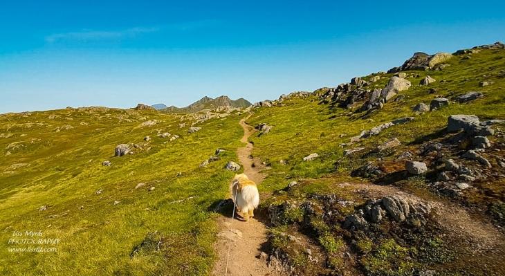 Justadtinden hike scenic views mountain landscape lakes Vestvågoy Justadheia Lofoten Norway