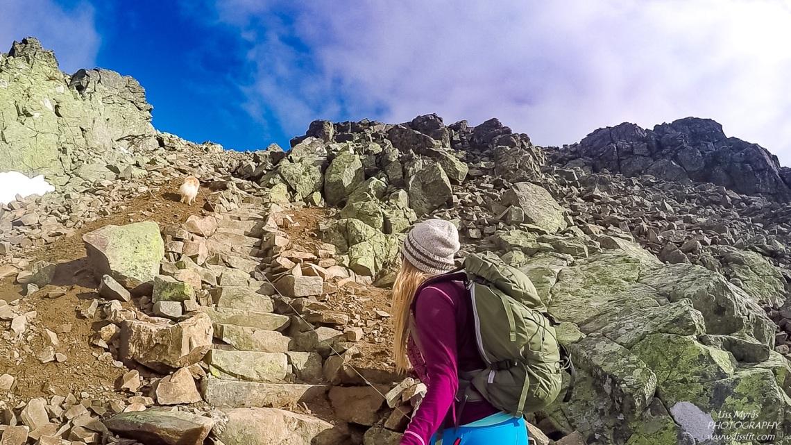 Hallingskarvet Prestholtrunden sherpa stairs geilo trapper