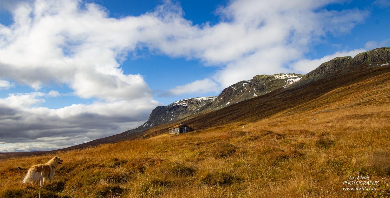 Hallingskarvet Prestholtrunden mountain massif geilo